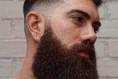 42-ریش بلند-سایه کاری - موهای کوتاه